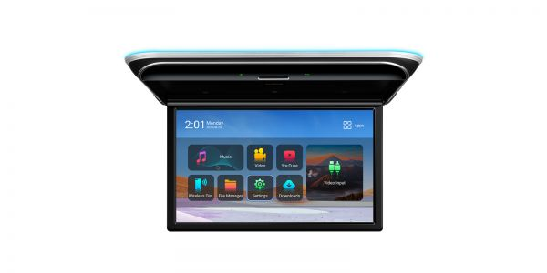"""17.3"""" 